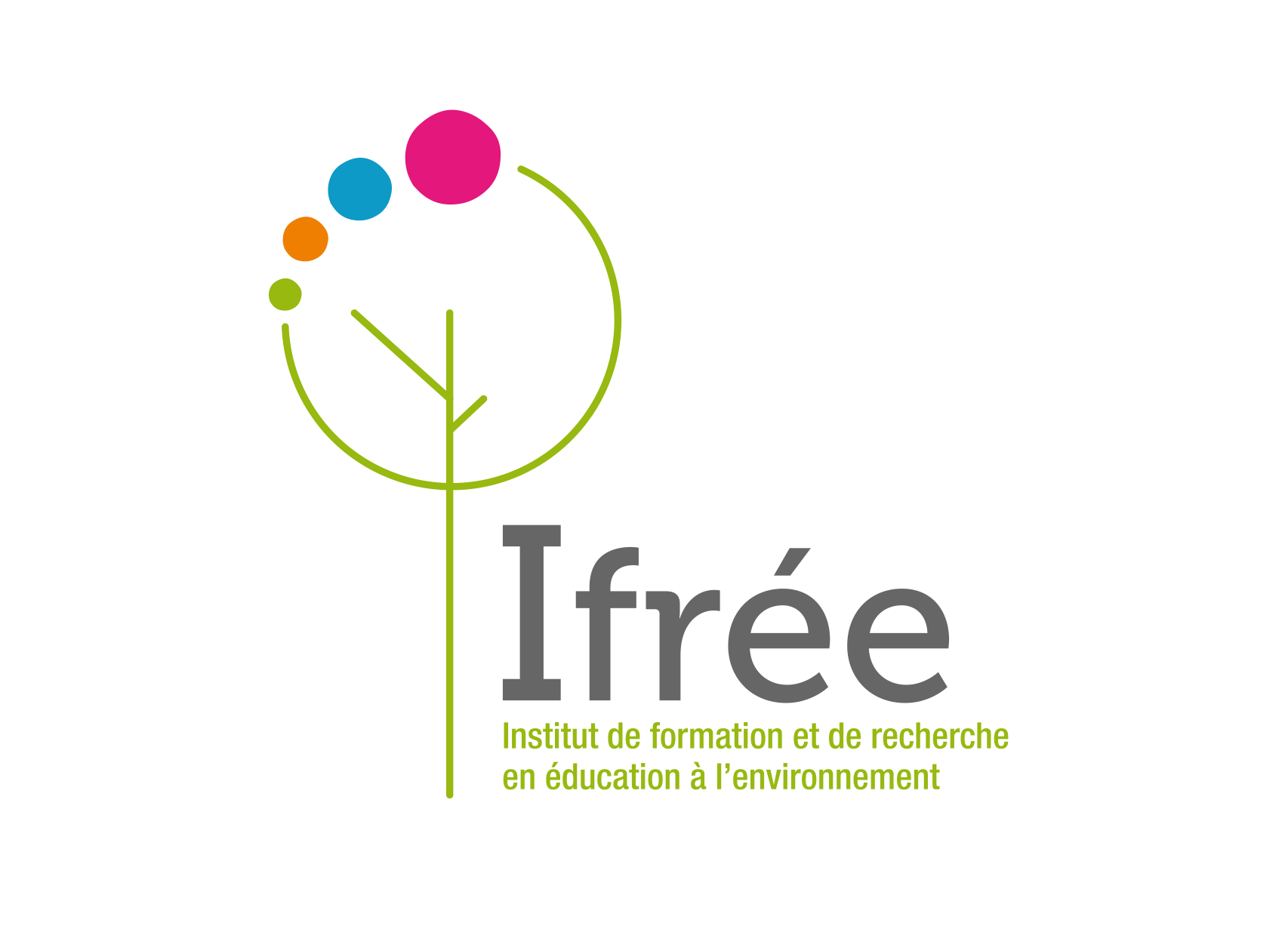 logo IFREE