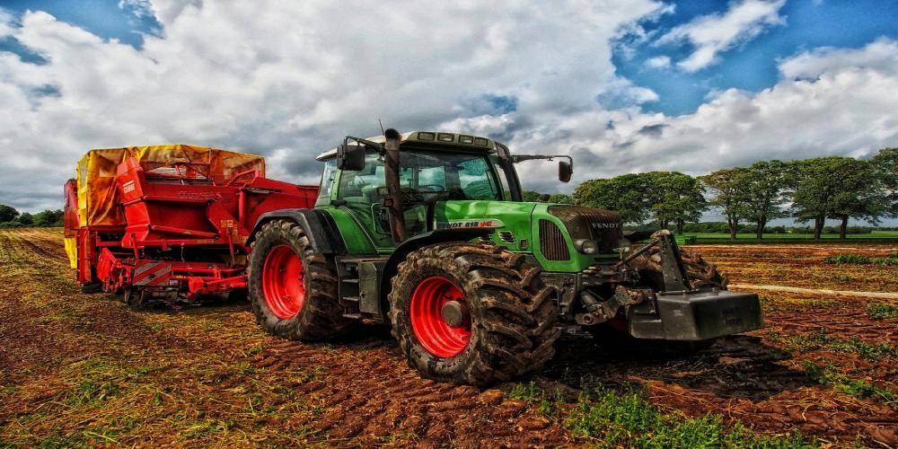 Vignette publication conso emission agricole et forestier